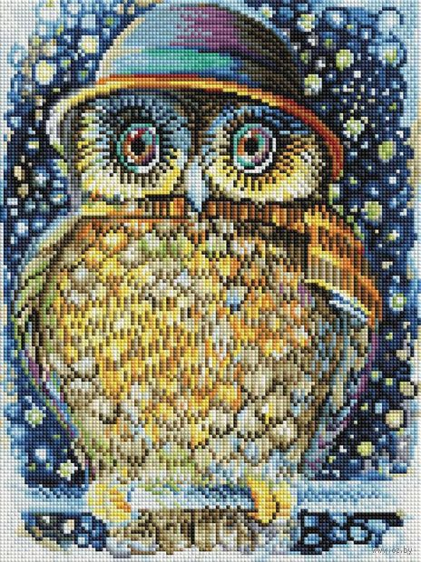 """Алмазная вышивка-мозаика """"Сова в шляпе"""" (300х400 мм) — фото, картинка"""