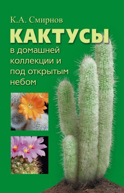 Кактусы в домашней коллекции и под открытым небом. К. Смирнов