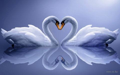 "Алмазная вышивка-мозаика ""Лебеди"" (500х800 мм) — фото, картинка"