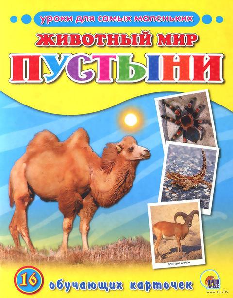 Животный мир. Пустыни