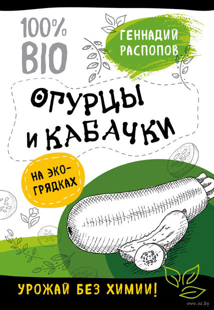 Огурцы и кабачки на эко грядках. Урожай без химии — фото, картинка