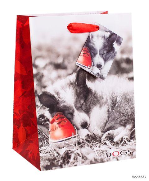 """Пакет бумажный подарочный """"Щенок"""" (7,8x22,5x10,2 см) — фото, картинка"""