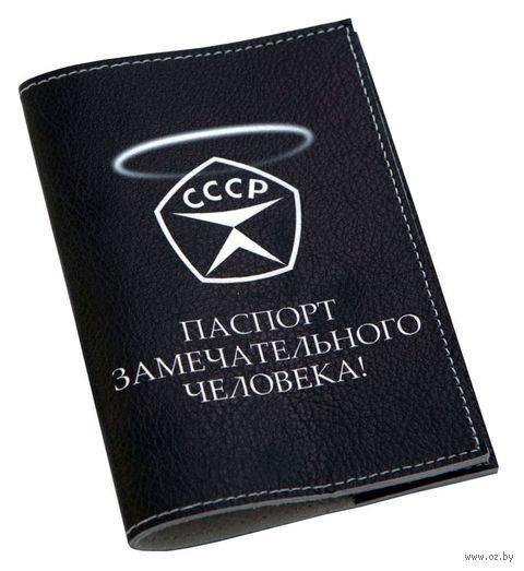 Обложка на паспорт (арт. C1-17-292) — фото, картинка