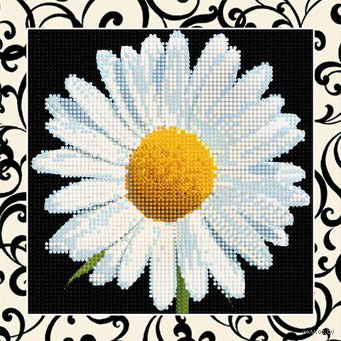 "Алмазная вышивка-мозаика ""Ромашка"" (250х250 мм) — фото, картинка"