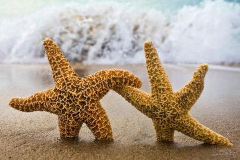 "Алмазная вышивка-мозаика ""Две звезды"" (300х200 мм) — фото, картинка"