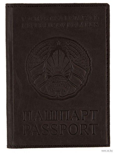 Обложка на паспорт (арт. C4t-101-4) — фото, картинка