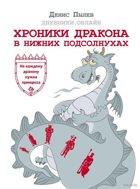 Хроники Дракона в Нижних Подсолнухах — фото, картинка