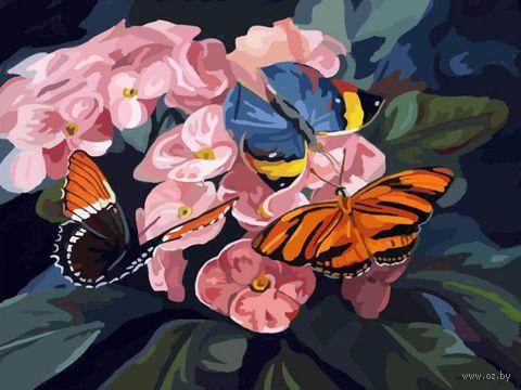 "Картина по номерам ""Бабочки на цветах"" (400х500 мм)"