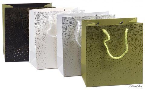 Пакет бумажный подарочный (18х19,5х10 см) — фото, картинка