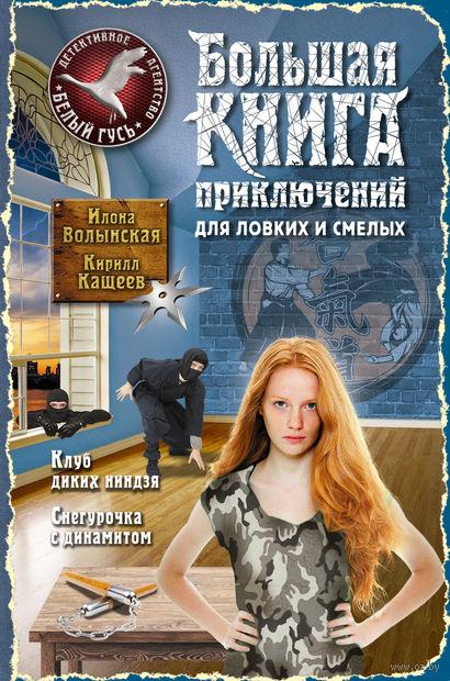 Большая книга приключений для ловких и смелых. Илона Волынская, Кирилл Кащеев
