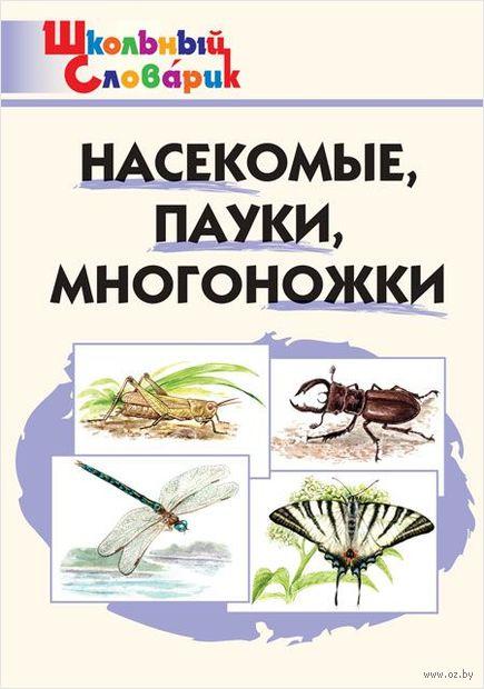 Насекомые, пауки, многоножки — фото, картинка