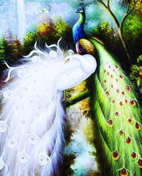 """Алмазная вышивка-мозаика """"Величественные павлины"""" (660х790 мм) — фото, картинка"""