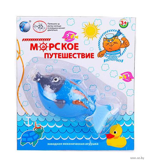"""Заводная игрушка для купания """"Морское путешествие"""" (арт.YS1378-4)"""