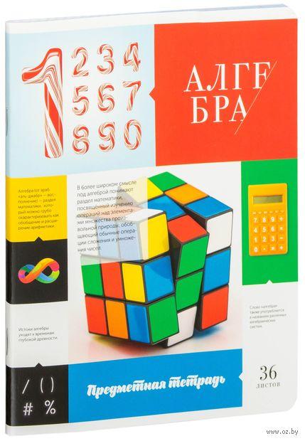 """Тетрадь полуобщая в клетку """"Алгебра"""" (36 листов) — фото, картинка"""