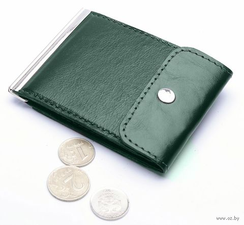 Зажим для денег (арт. Z10-113-0) — фото, картинка