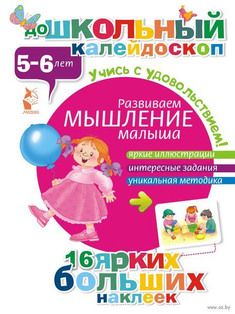 Развиваем мышление малыша (5-6 лет)