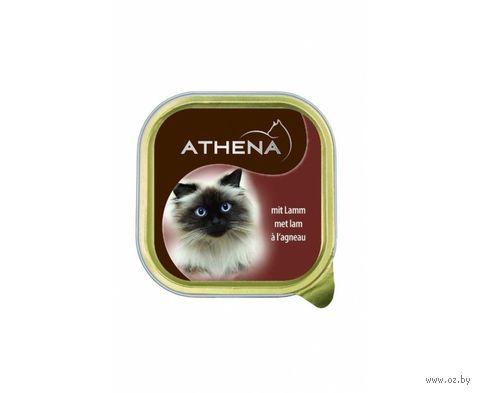Консервы для кошек (100 г; ягненок) — фото, картинка
