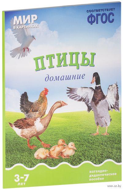 Птицы домашние. Наглядно-дидактическое пособие. Для детей 3-7 лет. Т. Минишева