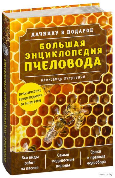 Большая энциклопедия пчеловода — фото, картинка
