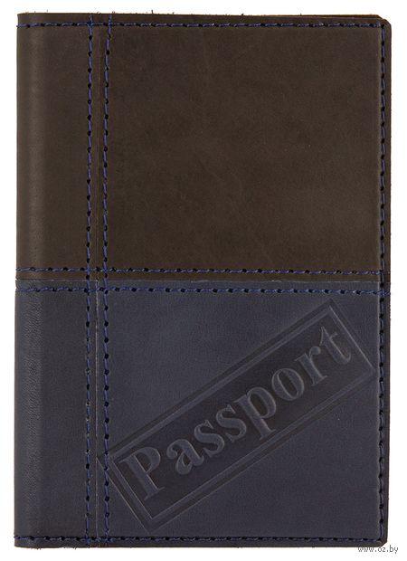 Обложка на паспорт (арт. C4t-106-80) — фото, картинка