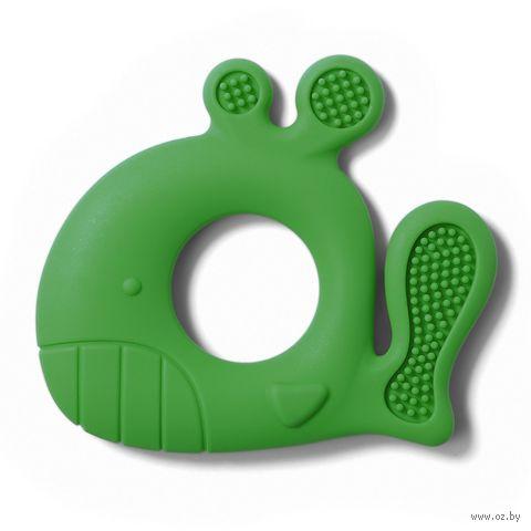 """Прорезыватель """"Кит"""" (зелёный) — фото, картинка"""